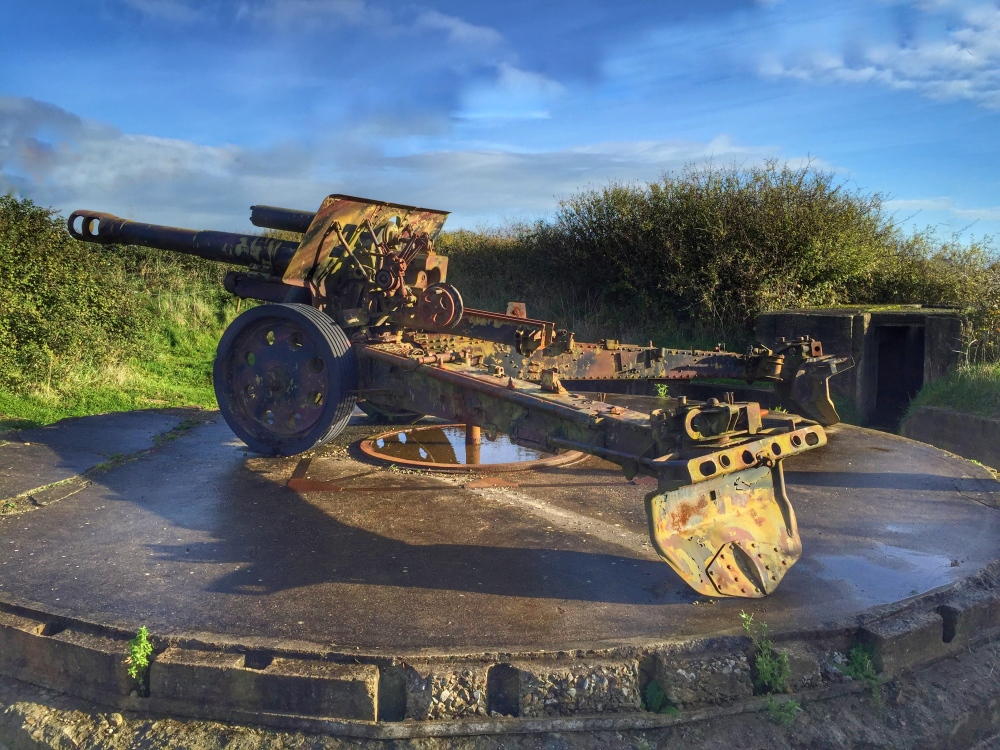 Howitzer, Maisy Battery 2015