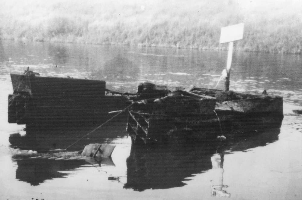 The Buffalo in the River Maas 1977.